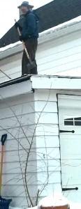 roof-ice-chop-116x300